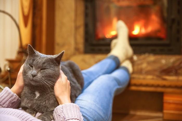 暖炉の前で女性に抱かれてくつろぐ猫