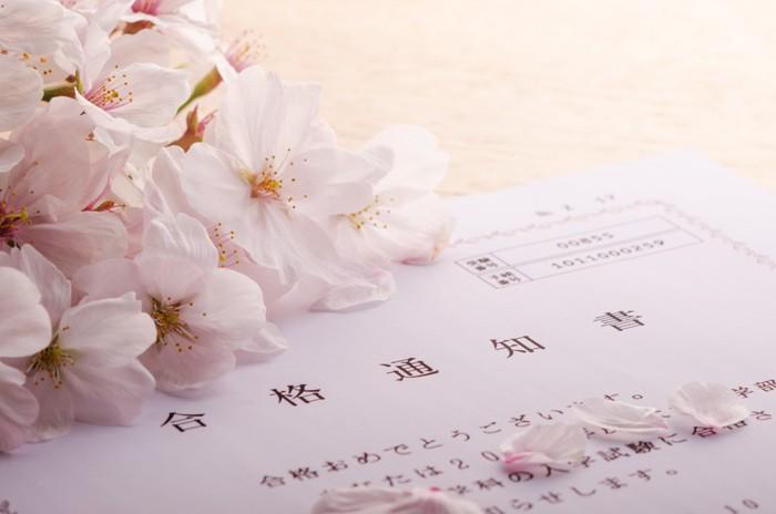 桜と合格通知書の写真