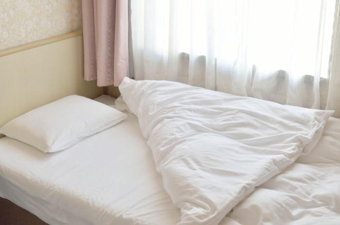 猫と一緒に寝る布団