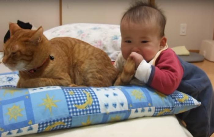 しっぽを口に入れる赤ちゃん