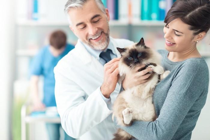 猫を抱く飼い主と笑顔の獣医師