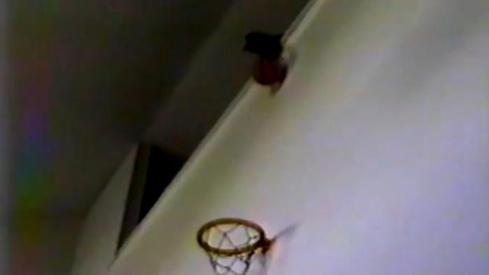 ボールをキャッチする猫