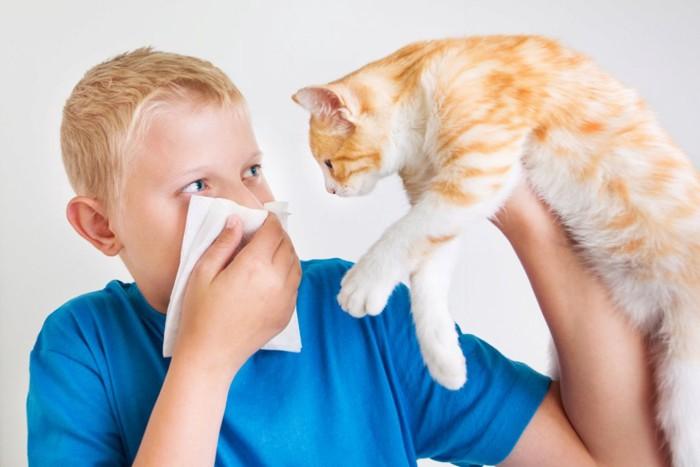男の子と口臭のする猫