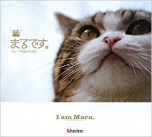 猫まるのDVD表紙