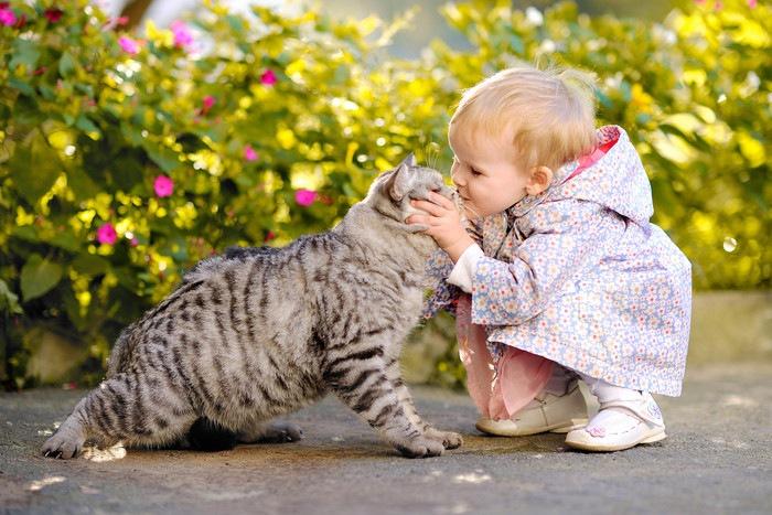 猫にキスする子供