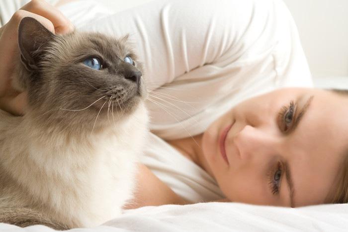 女性とブルーの目の猫