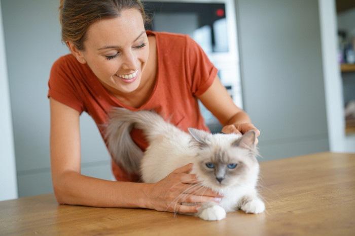 女性に撫でてもらう猫の写真