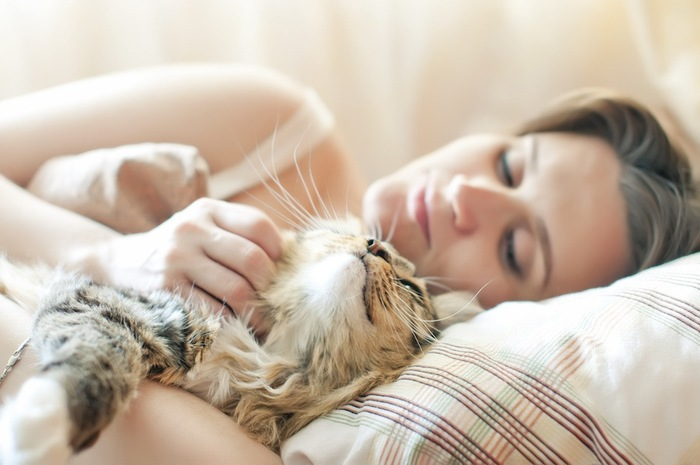 一緒の布団で眠る女性と猫