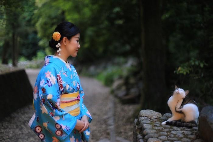 猫を見つめる着物を着た女性