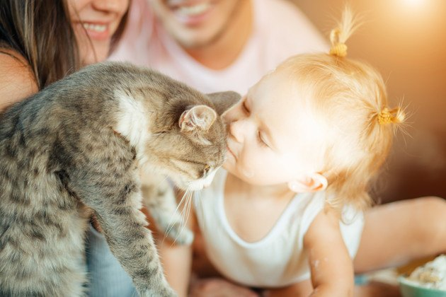 マンションに住んでいる赤ちゃんと猫