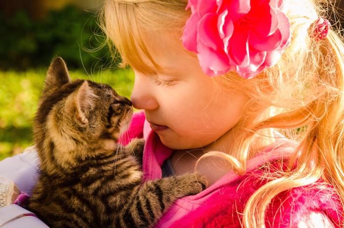 可愛すぎる子猫を抱いて鼻キスをする少女