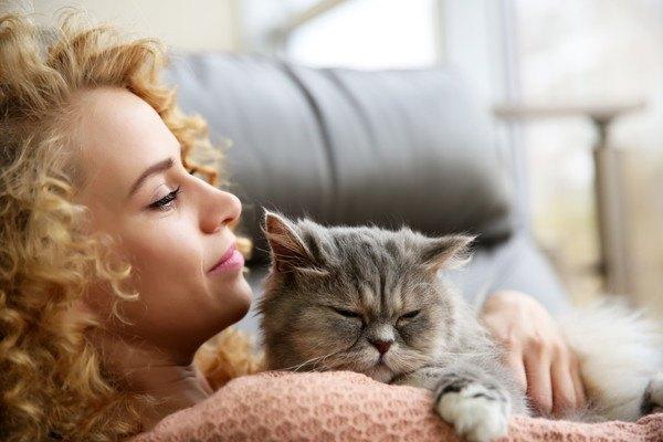 女性に抱っこされる長毛種猫