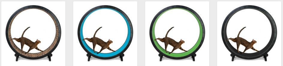 Cat Exercise Wheelカラー
