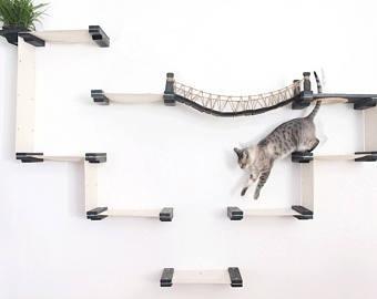 猫のつり橋と猫