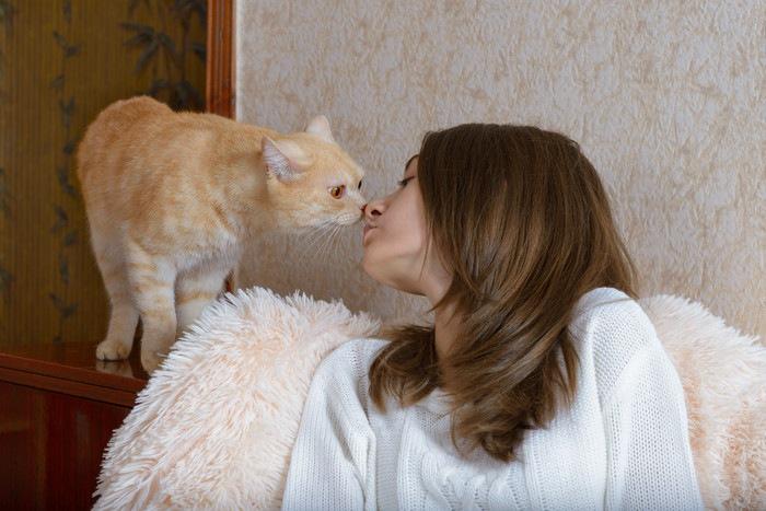 鼻キスする女性と猫