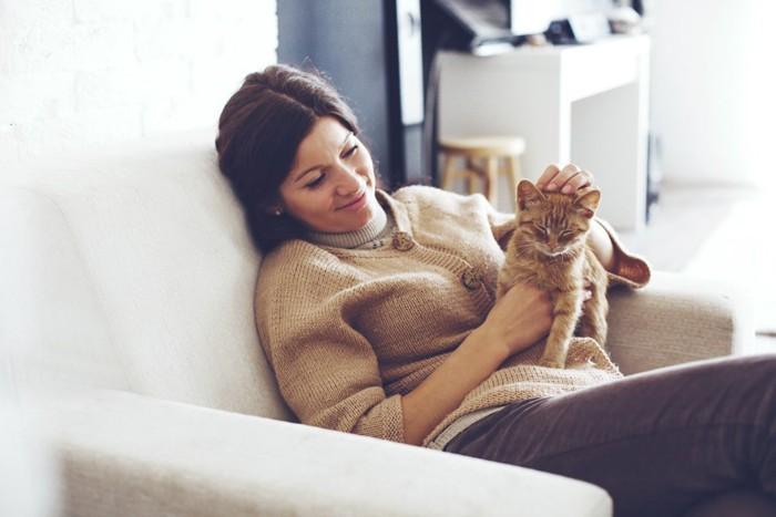 ソファーで女性に撫でられている猫