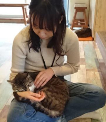 らぶねこの猫と女性