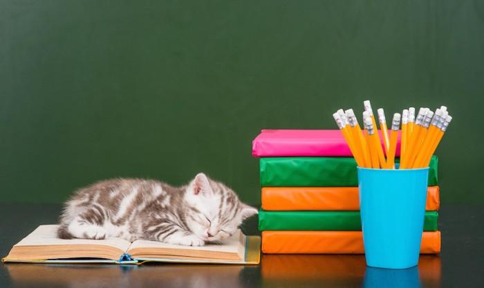 本の上で寝ている子猫と文房具