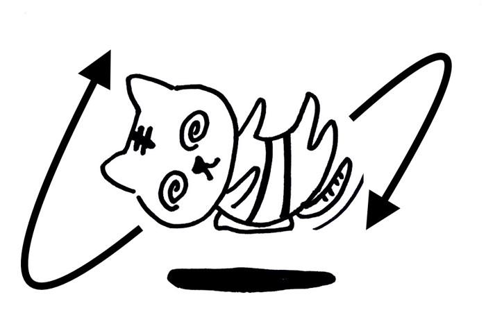 バター猫のパラドックス説明イラスト3