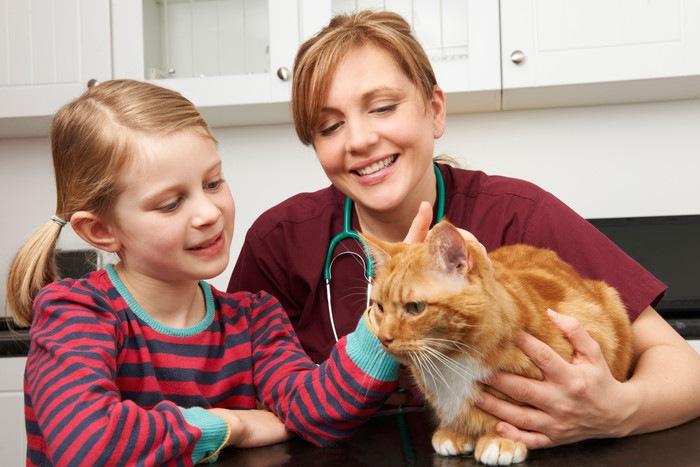 子供と獣医と茶色い猫