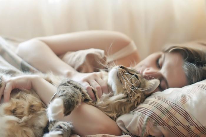 飼い主に抱かれてベッドで一緒に眠る猫