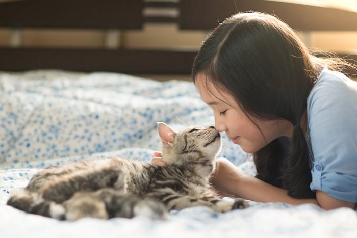 顔を近づけ合う女の子と猫