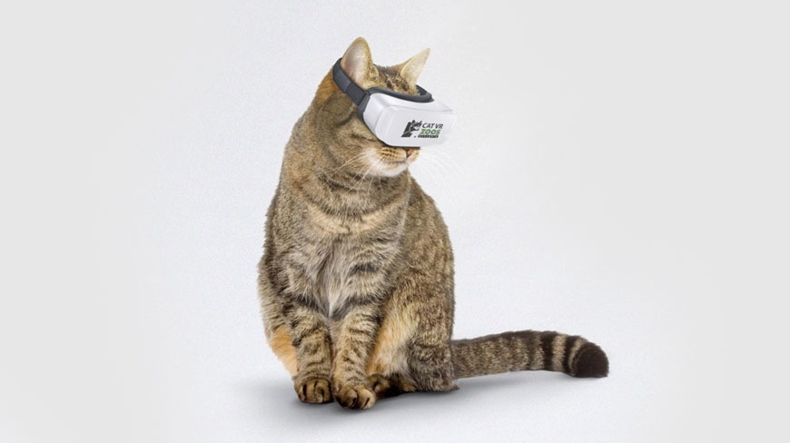 猫用VRをつけている猫