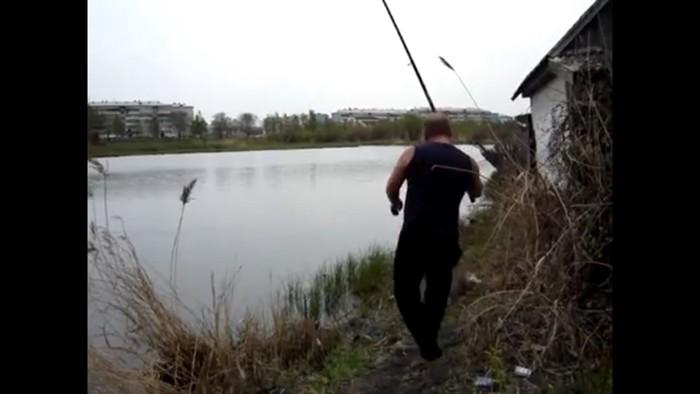 茂みに走る猫
