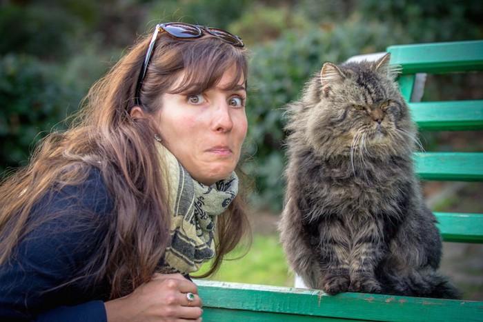 近づく女性から顔をそらす猫
