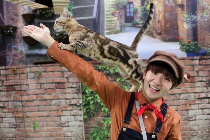 お姉さんの腕に乗る猫