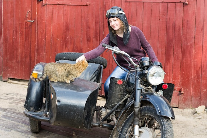 猫を撫でる女性バイクライダー