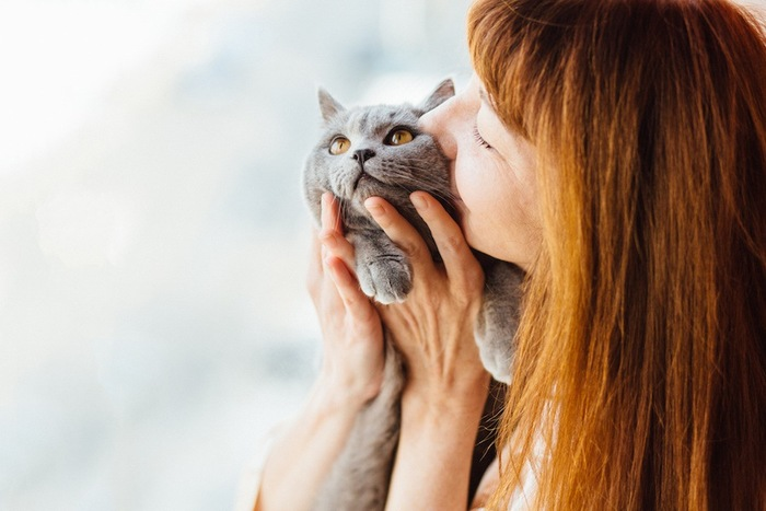 グレーの猫を抱いてキスをする女性