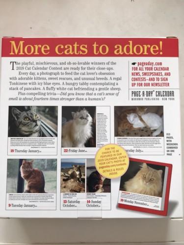猫のカレンダー裏表紙