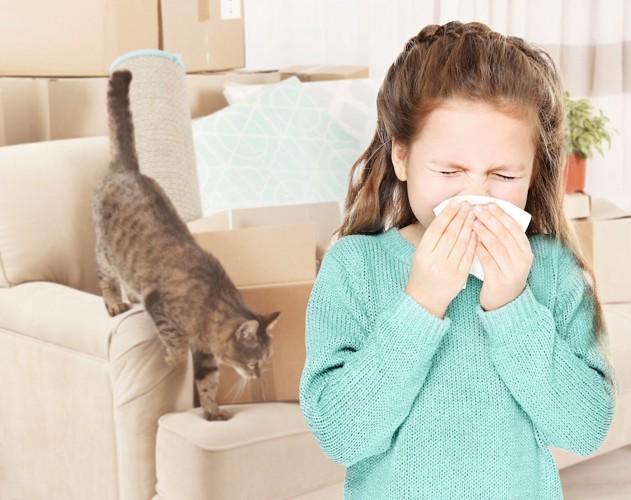 鼻をかむ女の子と猫