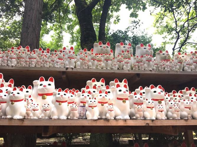 たくさん並べられた豪徳寺の招き猫