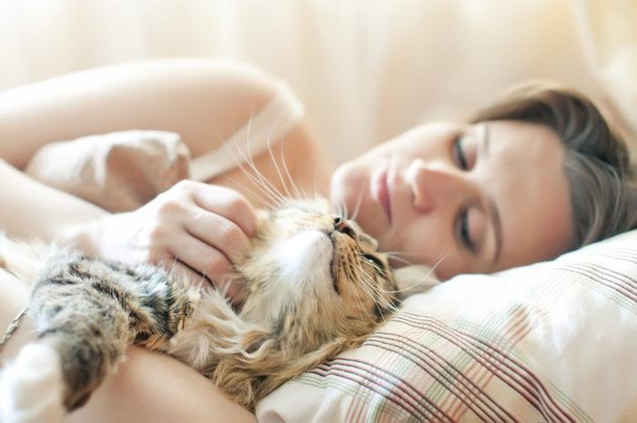 猫と布団に入っている女性