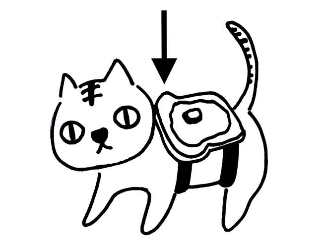 バター猫のパラドックス説明イラスト1