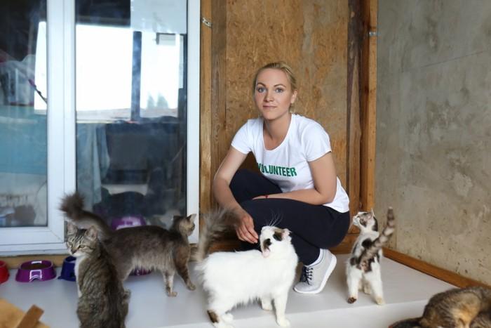沢山の猫と女性