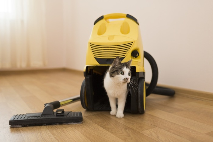 掃除機と猫