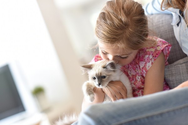 子供が子猫を抱っこする