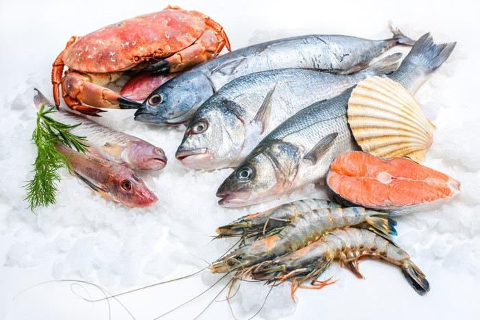生の魚介類