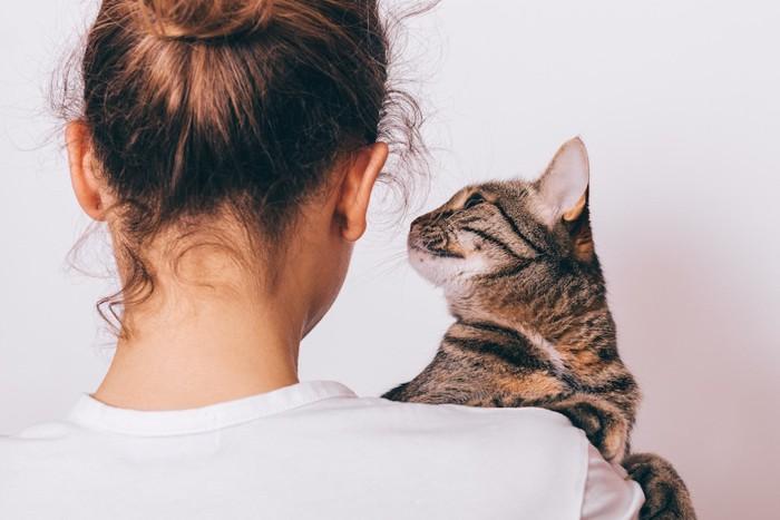 抱っこした女性を見つめる猫