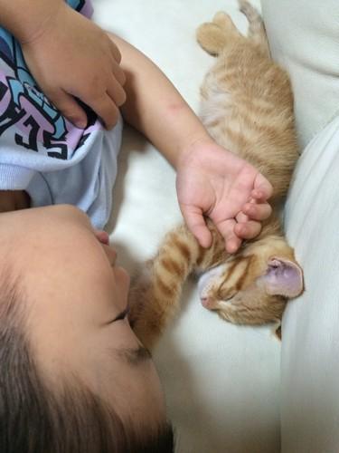 子猫と子供が眠る写真