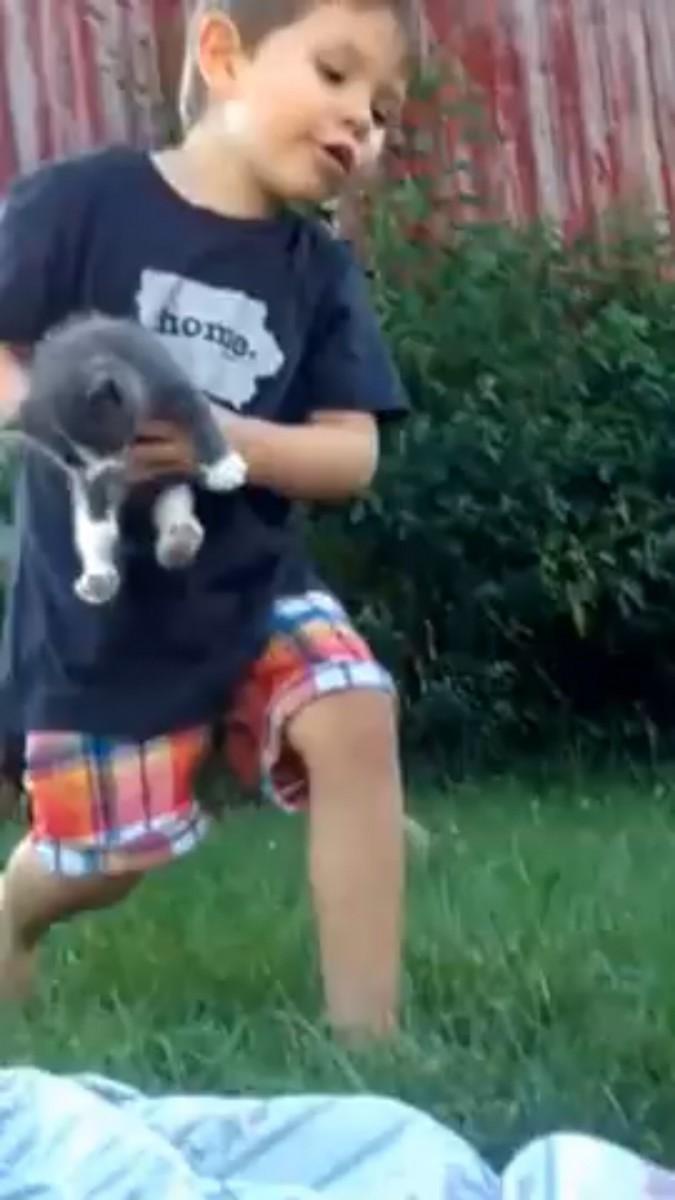 子猫を抱える男の子