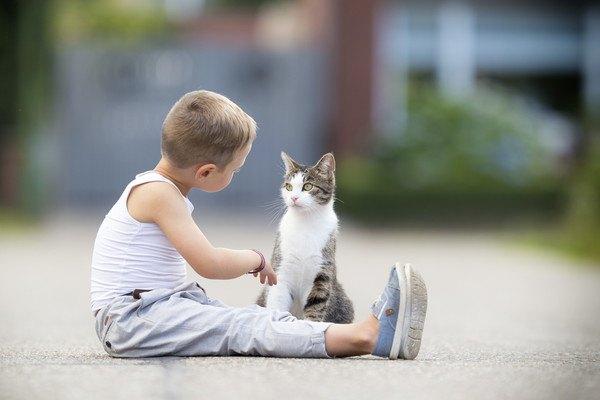 猫に話しかける子供