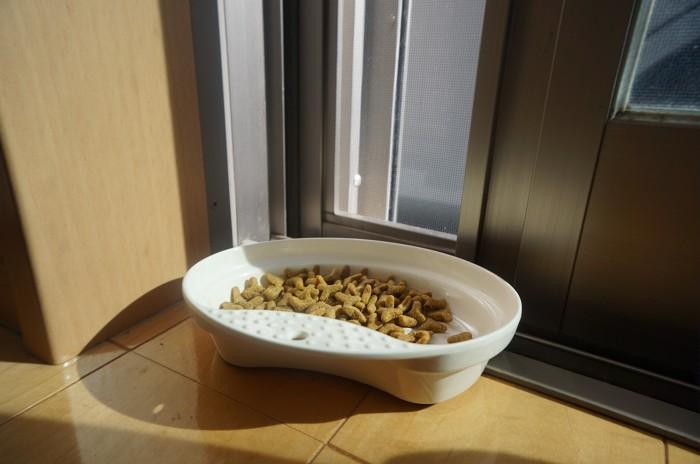 少し開けたドアと猫の餌