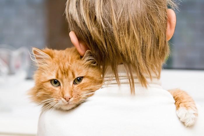 茶トラ猫を抱っこする少年の後ろ姿
