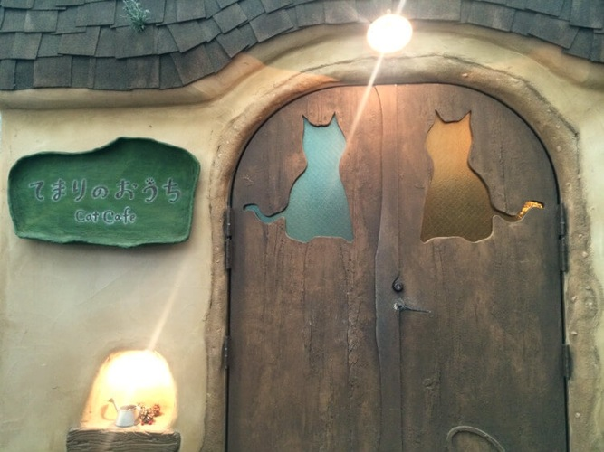 猫カフェの入り口