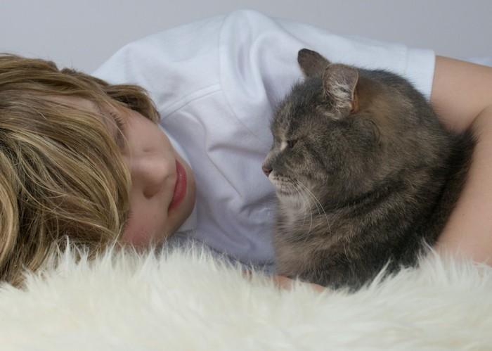 子供と見つめ合う猫