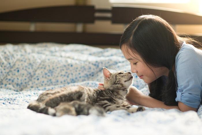 猫と女の子の写真
